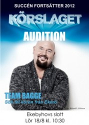 Team-Bagge
