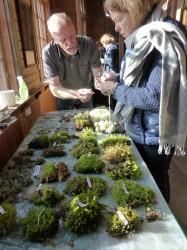Sture Nordmark från Naturskyddsföreningen hjälper en besökare in i mossornas värld