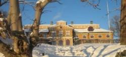 Ekebyhovs slott i vinterskrud